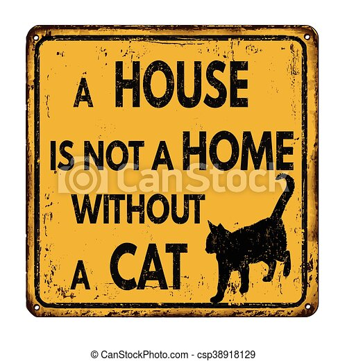 A house is not a home without a cat - csp38918129