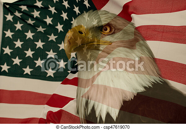 American flag with eagle - csp47619070