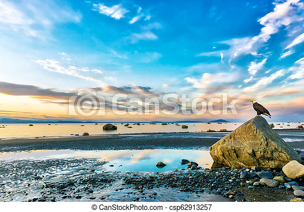 Bald Eagle watching a stunning sunset on the Cook inlet in Alaska - csp62913257