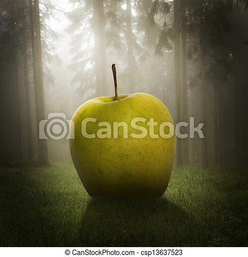 big apple in the forest - csp13637523