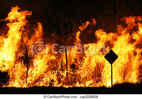 Bush fire - csp3228558