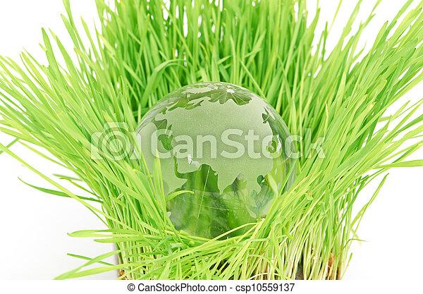 Environment concept - csp10559137