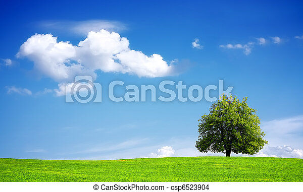 Environment - csp6523904