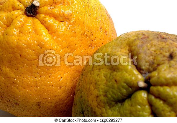 fruit - csp0293277