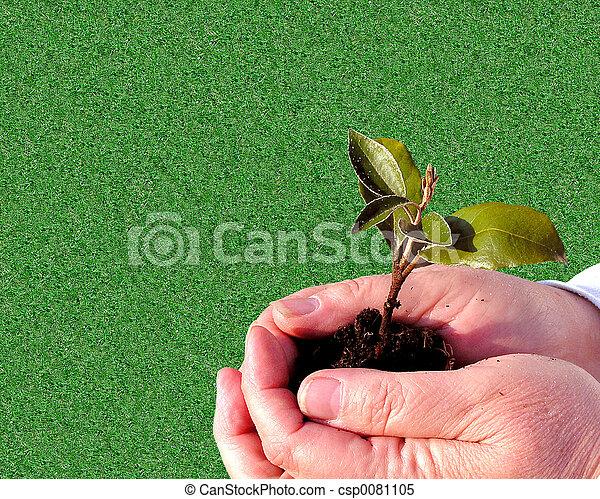 Gardening Care - csp0081105
