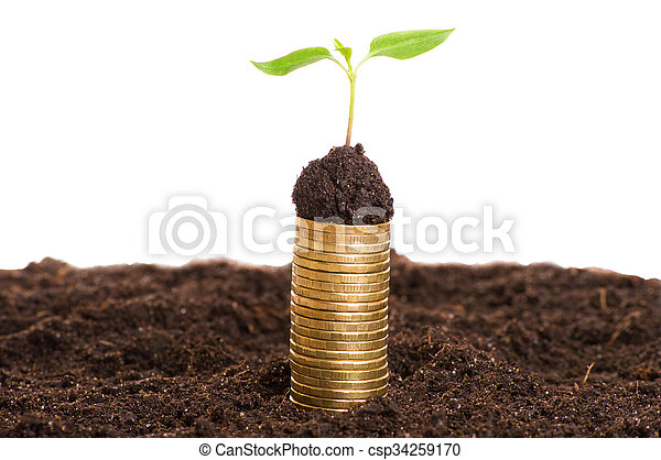 Golden coins in soil with young plant. Money growth concept. - csp34259170