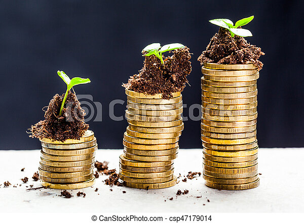 Golden coins in soil with young plant. Money growth concept. - csp47179014