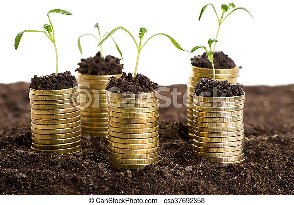 Golden coins in soil with young plant. - csp37692358