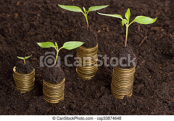 Golden coins in soil with young plant. Money growth concept. - csp33874648