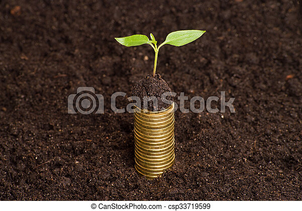 Golden coins in soil with young plant. Money growth concept. - csp33719599