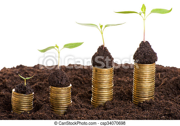 Golden coins in soil with young plant. Money growth concept. - csp34070698