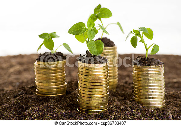 Golden coins in soil with young plant. - csp36703407