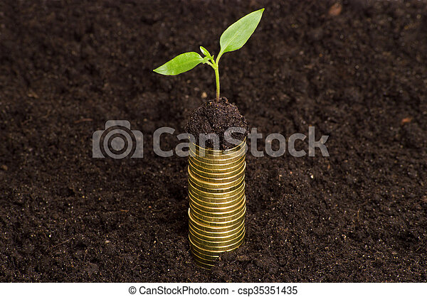 Golden coins in soil with young plant. Money growth concept. - csp35351435