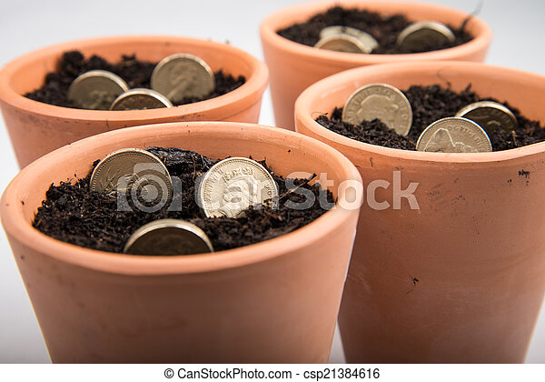 growing money in pot - csp21384616