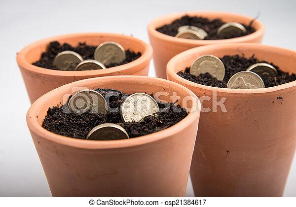growing money in pot - csp21384617
