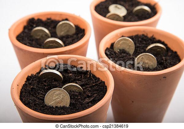 growing money in pot - csp21384619