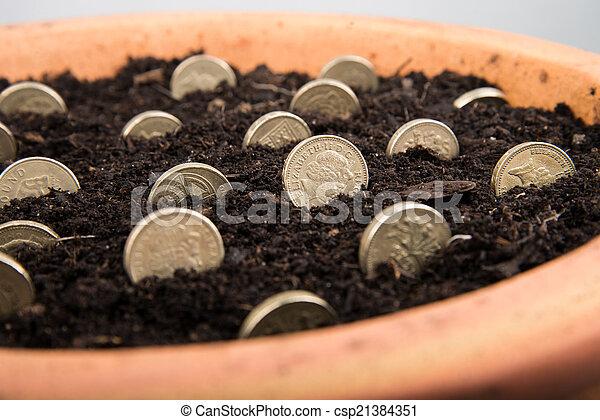 growing money in pot - csp21384351