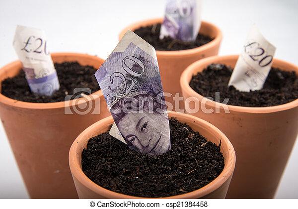 growing money in pot - csp21384458