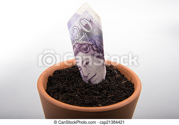 growing money in pot - csp21384421