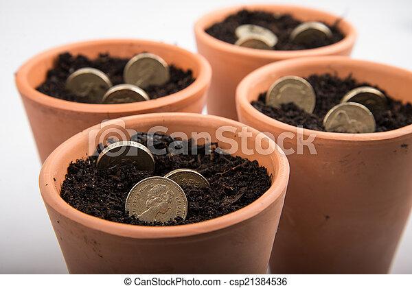 growing money in pot - csp21384536