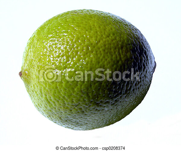 isolated lime - csp0208374