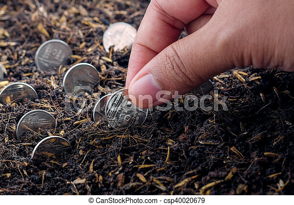 Money growth concept coins in soil - csp40020679