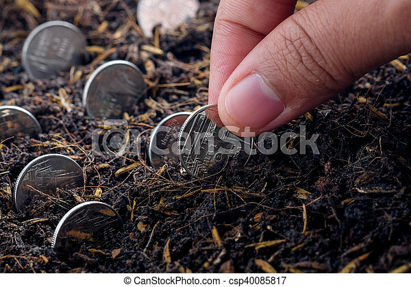 Money growth concept coins in soil - csp40085817