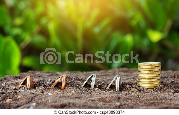 Money growth concept coins in soil. Yellow tone with sun - csp43893374