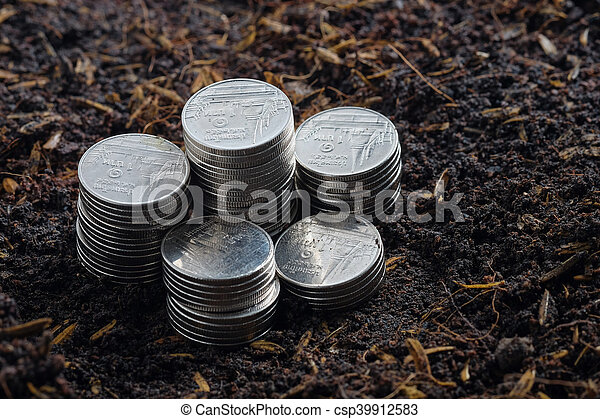 Money growth concept coins in soil - csp39912583