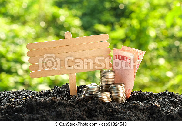 Money growth concept coins in soil - csp31324543