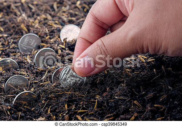 Money growth concept coins in soil - csp39845349
