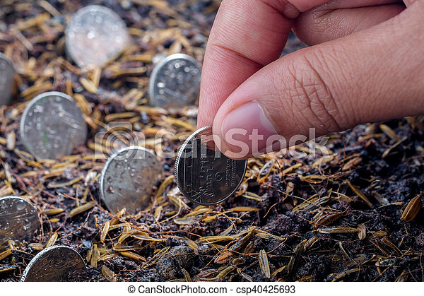 Money growth concept coins in soil - csp40425693