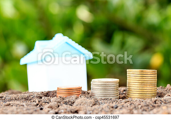 Money growth concept coins in soil .Collect money to build a house. - csp45531697