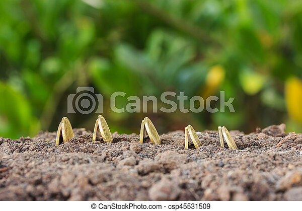 Money growth concept coins in soil - csp45531509