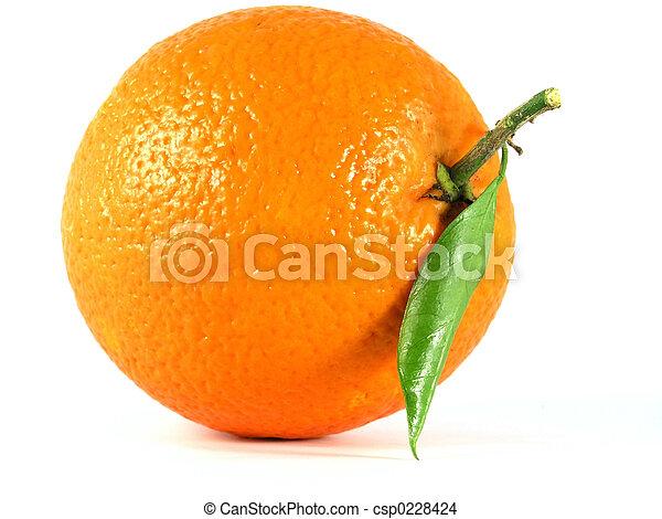 orange - csp0228424