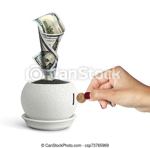 profit concept, money growing in pot - csp73765969