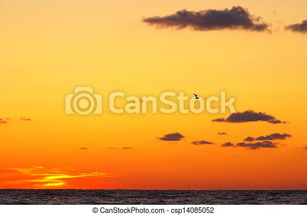 Sea sunset - csp14085052