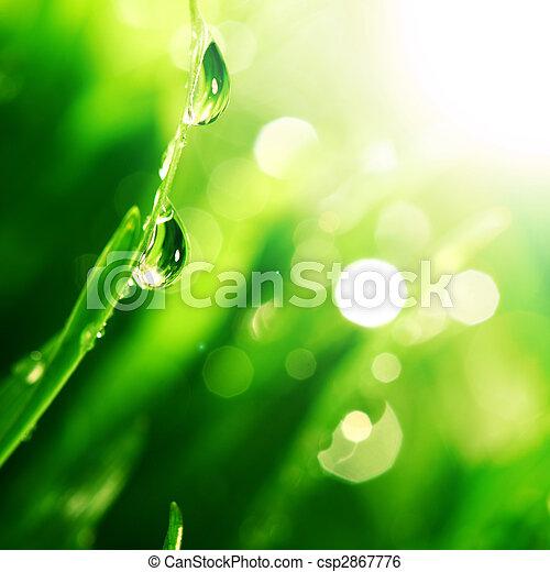 shine water drop - csp2867776