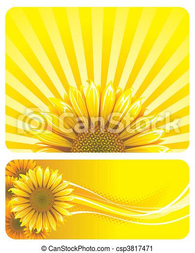 Sunflower - csp3817471