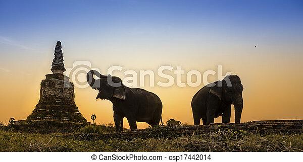 Sunset Thai countryside in thailand - csp17442014