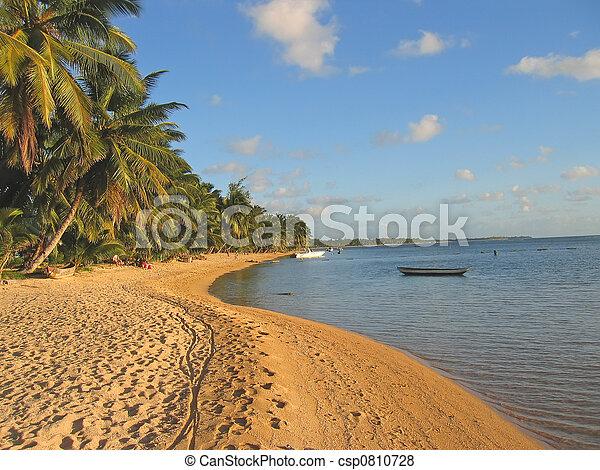 Yellow sand beach with palm trees, Nosy Boraha, Sainte, Marie island, Madagascar - csp0810728